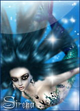 Sirena Display Picture